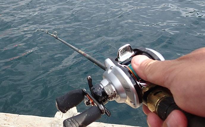 イカダで狙うカワハギ釣果アップ5つのポイント 時合いを引き延ばそう