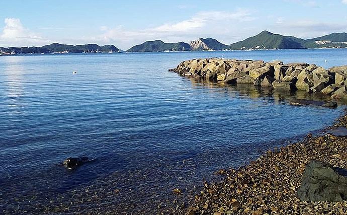 解禁直後の家島諸島で秋エギング 600gアオリイカ登場!【兵庫県】