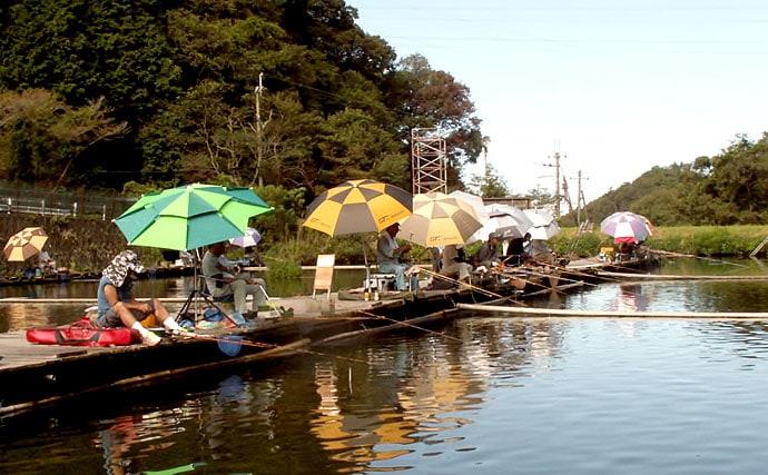 市販の『わらび餅』でヘラブナ釣りに挑戦 アタリはあるも?【大阪】