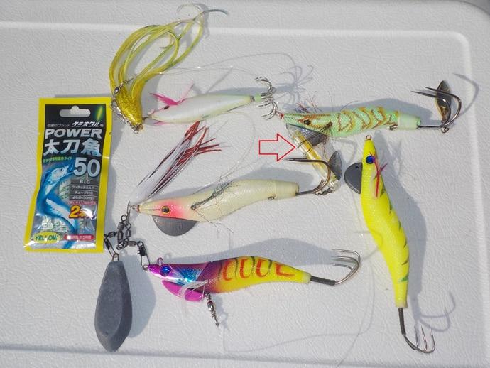 ここ5年間で新たに出てきたり釣り物&釣り方3選 大流行のエギタコも