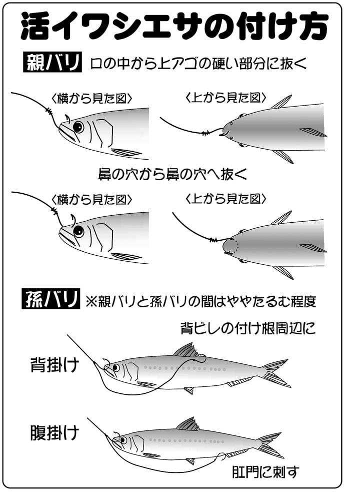 広域解禁直後の『外房ヒラメ釣り』キホン解説 オススメ船宿4選も紹介