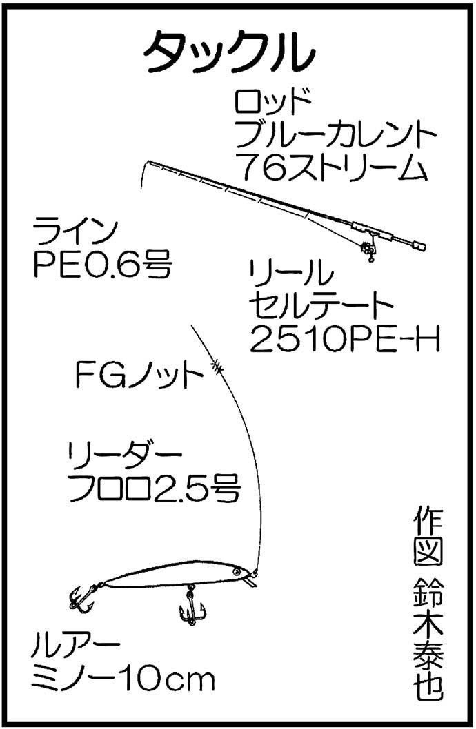 1時間のシーバスゲームで70cm頭に本命3キャッチ【福岡・博多湾】