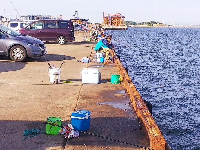 堤防サビキ釣りで15cm級アジ66尾 釣果はアジ寿司へ【富津新港】