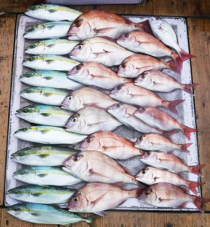 【愛知・三重】沖釣り最新釣果 67cmハチビキに150cm超オキザワラ