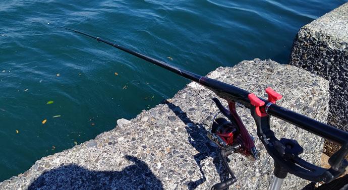 岸壁からお手軽ウキフカセ釣行 30cm級メジナ数釣り満喫【清水港】