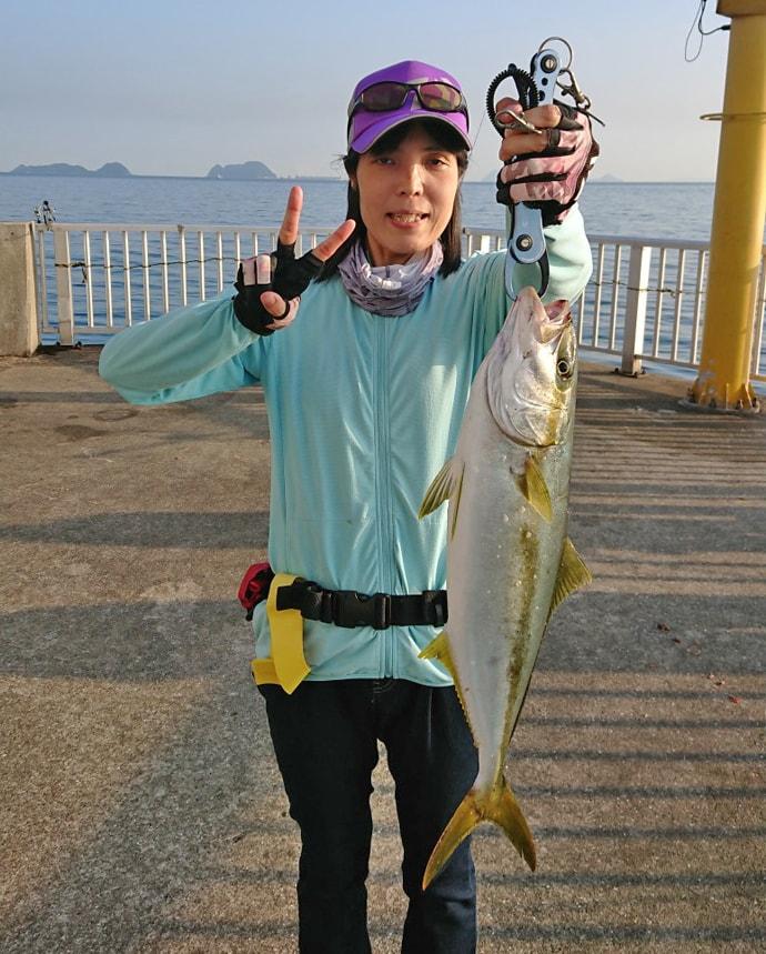 陸っぱりでの泳がせ釣りで60cm級ヒラゴ3尾【脇田海釣り桟橋】