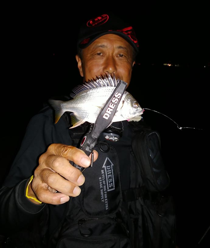 名古屋港チニングゲームでレア魚『チャイロマルハタ』 多魚種と戯れる