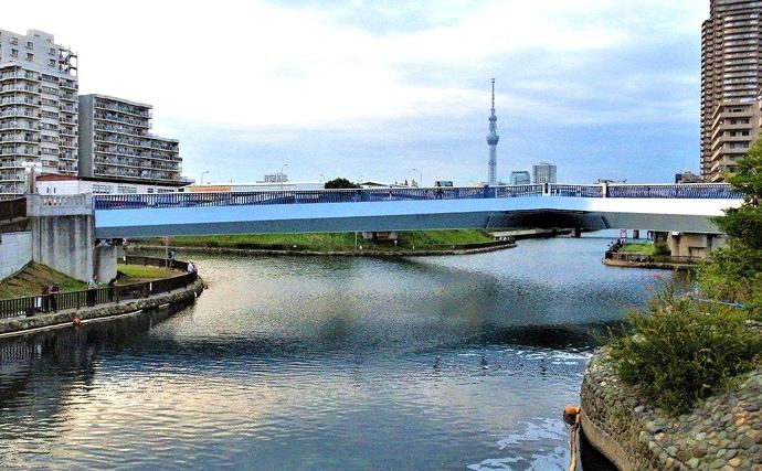 人工エサでハゼ釣りに挑戦 13cm頭に35尾と好釣【東京・横十間川】