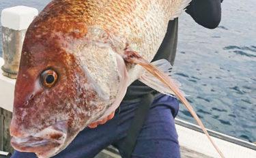 【静岡・三重・福井】沖釣り最新釣果 タイラバで82cm大ダイ登場!