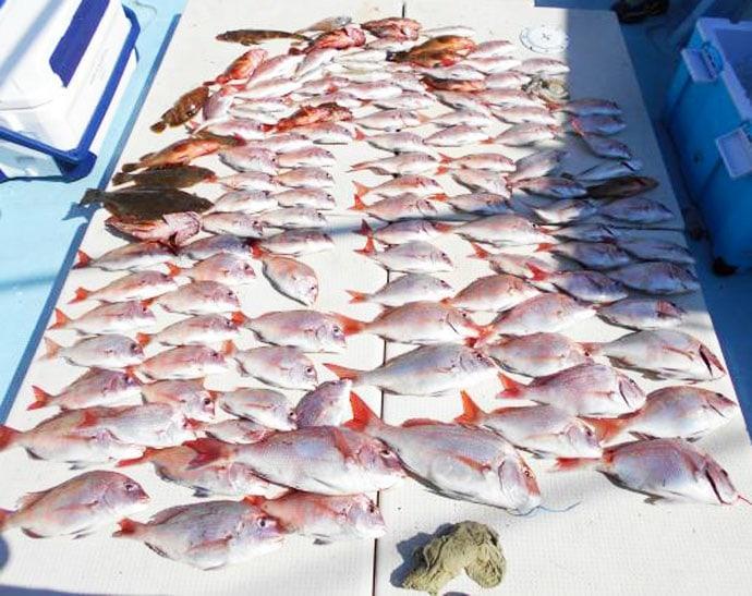 【佐賀・長崎・熊本】沖釣り最新釣果 10kgヒラマサにマダイ船中3桁