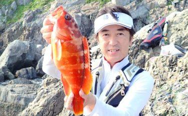 磯でのカゴ釣りで1kg級を頭に2時間でアカハタ8尾【上甑島】