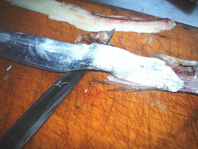 【釣果レシピ】小型タチウオの美味しい食べ方:目打ちで捌くのがオススメ