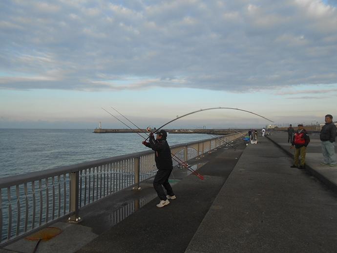 乗っ込みカレイ好釣り場:林崎漁港海浜ベランダ アクセス良好!【兵庫】
