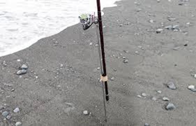 夜の投げ釣り楽し コロダイ不発もヘダイとニベがヒット【安芸海岸】