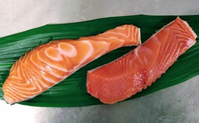 プロが教える「おいしい旬魚」の見分け方:秋サケ 商品形態ごとに解説
