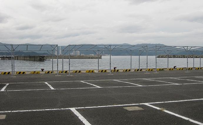 港内の近投で釣果有望 秋キス好調で20cm頭16匹【和歌山・新和歌浦】