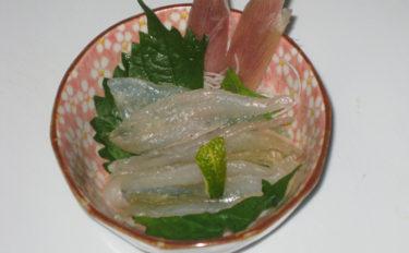 【釣果レシピ】キスの昆布締め:時間調整でうまみをコントロールしよう