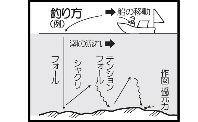 テンヤ釣りで越冬前の『荒食いマダイ』を狙う 50㎝級顔見せ【錦江湾】