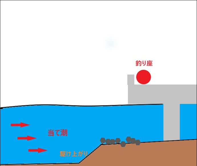 フカセ釣りで54cm頭に年無しクロダイ2匹 潮変わりで連発【清水港】