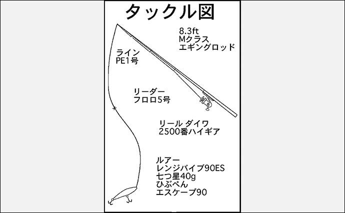 伊勢湾奥で激アツ回遊中の青物狙いショアジギング 広範囲でナブラ!