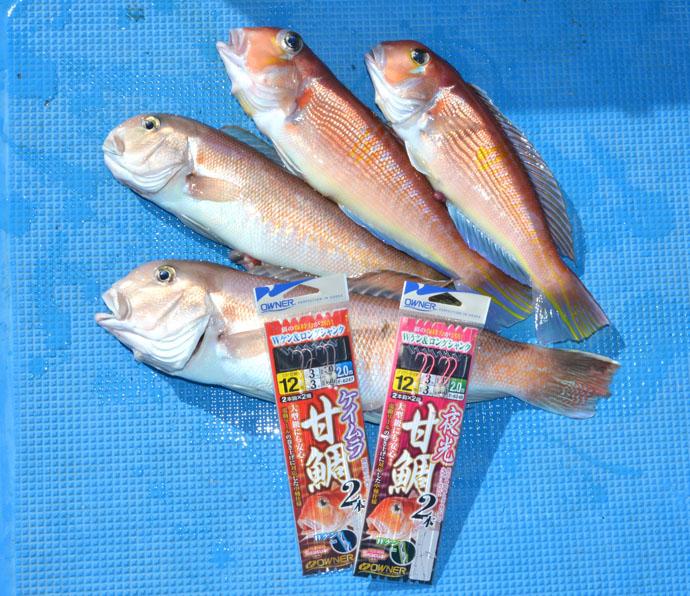 幻の超高級魚『シロアマダイ』が船中3尾 今年は大当たり年?【池田丸】