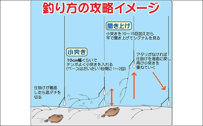 【2019関東エリア】冬カレイ釣りキホン解説 タックル〜釣り方まで
