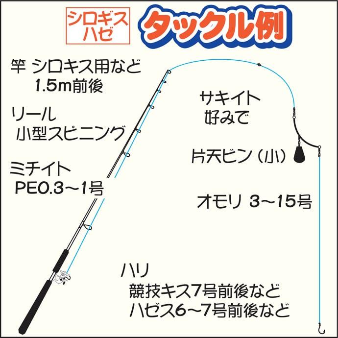 船キス&ハゼ釣りで合計60尾程度 24cm良型シロギスも【雄士丸】