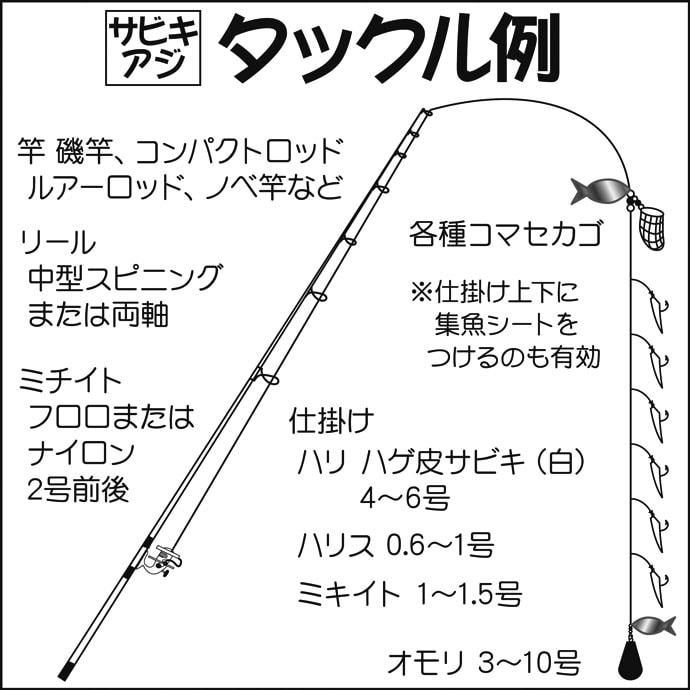 陸っぱりルアー&サビキ釣り タチウオ4尾にアジ54尾!【富津新港】