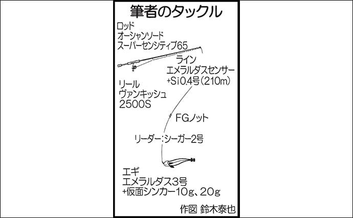 シーズン初ティプランエギング 600g頭アオリイカ5尾【きずなまりん】