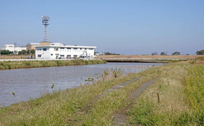 今週のヘラブナ推薦釣り場【茨城・上の島新川】