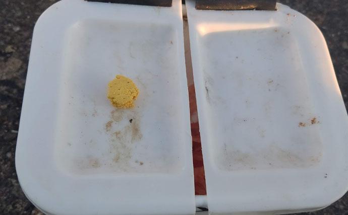 クロダイ狙フカセ釣りに有効な『さしエサ』ローテーション法3選