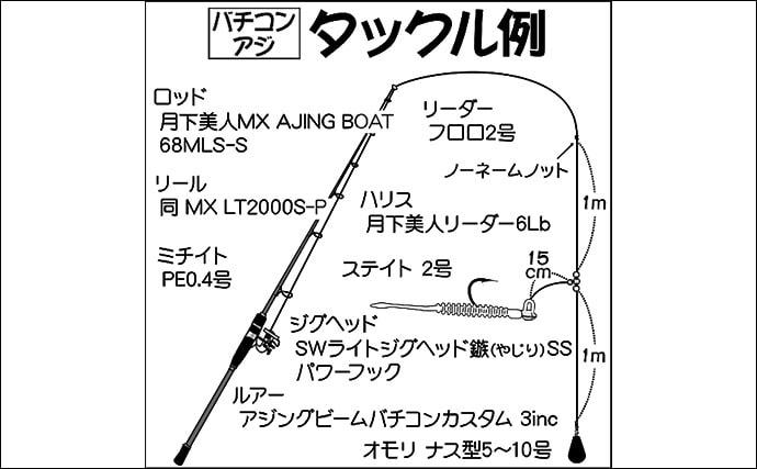 東京湾バチコンアジングで38.5cm頭に2人で約100尾の大釣り【渡辺釣船店】