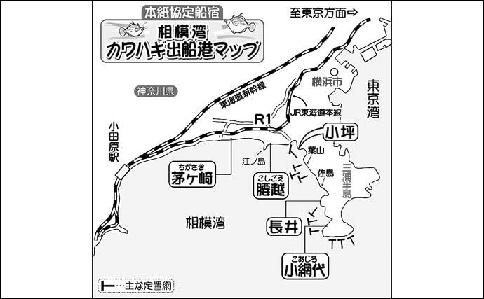 【2019秋冬】エキスパートが教えるカワハギ攻略法:三浦半島(相模湾)