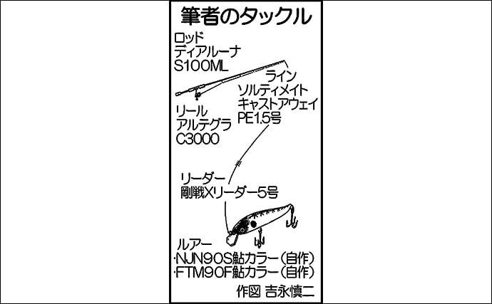 2daysリバーシーバスゲーム 51cm頭に銀ピカシーバス3尾【白川】