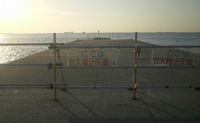 秋の沖波止を満喫 指4本級タチウオに25cmアジ!【第8防波堤】