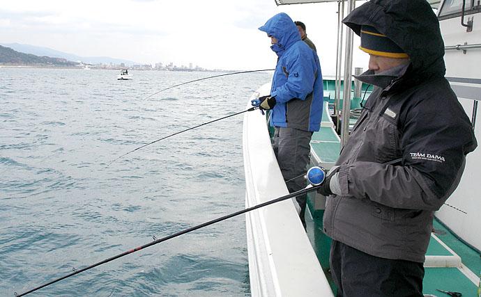 期間限定『ウマヅラハギ』釣り初心者入門 今期は型良し【明石海峡】