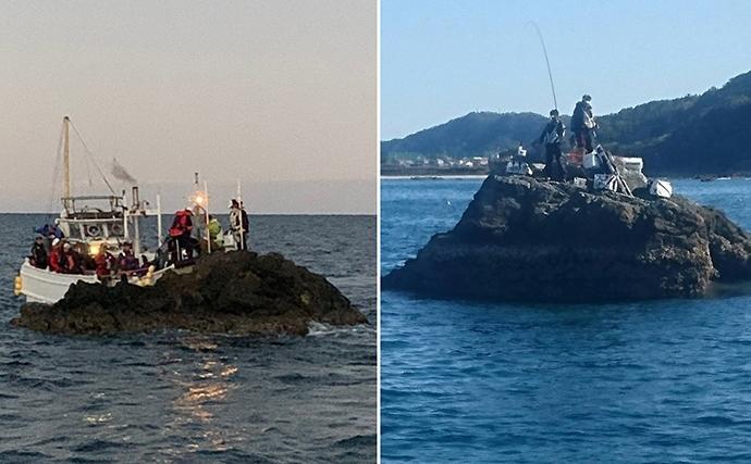 磯フカセ釣り大会で怪魚『ヒブダイ』をキャッチ&イート【和歌山・串本】