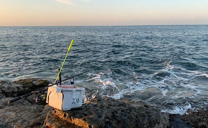 シーズン盛期の秋磯でフカセ釣り 「ウシグレ」含み良型連発【和歌山】