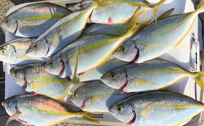 秋磯フカセ釣りで本命グレ不発も35cm頭にシマアジ15匹【和歌山】