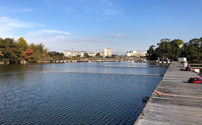 冬の管理池ヘラブナ釣行 『バランスの底釣り』を堪能【水藻FC】