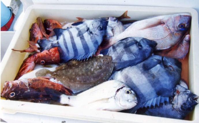 大人気の『ウタセ五目』釣り 多彩な魚種で賑やかな釣果に【忠栄丸】