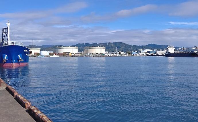 波止フカセ釣りで48cmクロダイ 水潮と水温低下に苦戦【江尻埠頭】