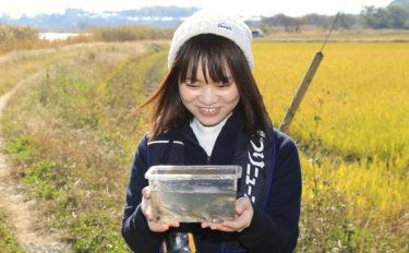 淡水小物釣り初体験レポート 「フナに始まりフナに終わる」【茨城】
