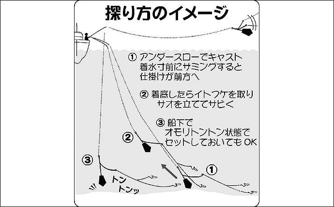【東京湾2019冬】船シロギス初心者入門 脂乗り最高の好ターゲット