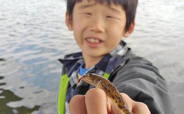 息子と一緒に小魚釣り堪能 台風の影響残るもハゼと対面【酒匂川】