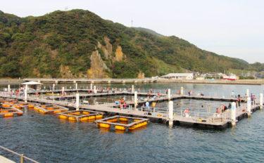 【2019九州】海上釣り堀のキホン 年末年始祝い膳に高級魚はいかが?