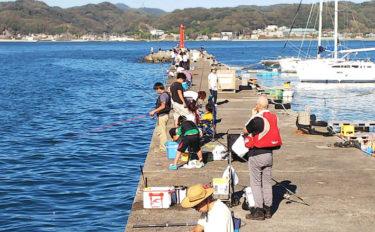 【関東】年末年始オススメ釣り場:富浦新港 クロダイとアジが狙える