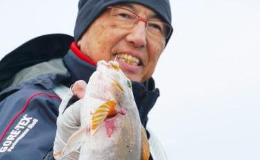 【中部】年末年始オススメ釣りもの:渥美半島「表浜」で投げアイナメ