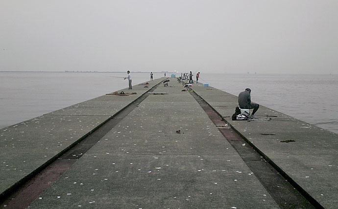 始めるなら冬がオススメ? 渡船で行く関西の沖防波堤釣りの魅力を紹介