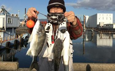 【関西】初釣りオススメ釣り場3選:大物狙いの投げ釣り編